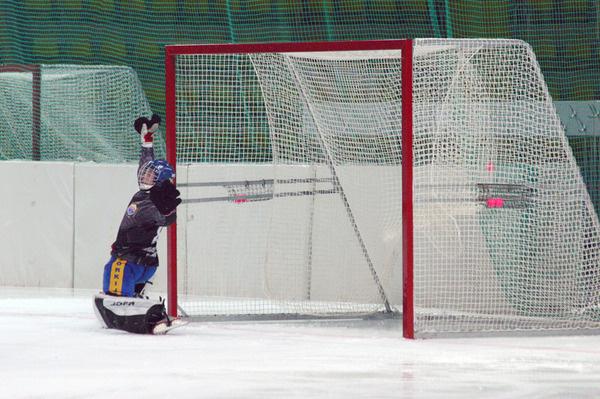 Сетка для хоккейных ворот 3,66х2,14х1х2 м, нить 2,6 мм 1