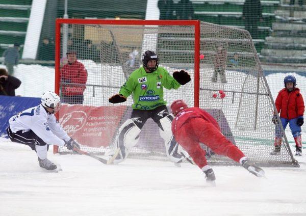 Сетка для хоккейных ворот 3,66х2,14х0,90х1,20 м, нить 3 мм 1